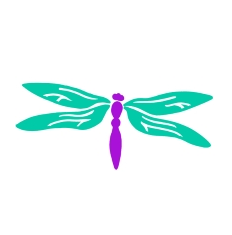 Dragonfly – Child (Years 3-6)